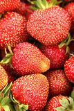 A lot of strawberries. Close-up of juicy strawberries Stock Image