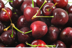 A lot of sweet cherry Stock Photography