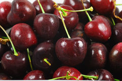A lot of sweet cherry Stock Image