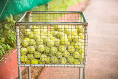 A lot of tennis balls in the basket Royalty Free Stock Images