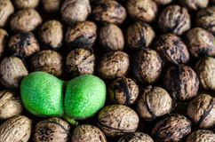 A lot of textured peeled walnuts and one double green Royalty Free Stock Photo