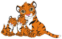 A lot of tigers Royalty Free Stock Photography