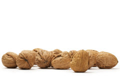 A lot of walnuts Stock Photography