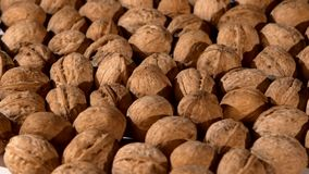 A lot of walnuts, rotation, background stock video