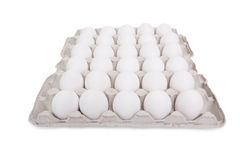 Lot of white eggs Stock Photos