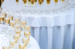 A lot of wine glasses with a champagne. Alcohol background Royalty Free Stock Photography