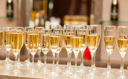 A lot of wine glasses with a cool delicious champagne or white wine at the bar Royalty Free Stock Image
