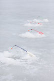 Lot winter fishing rods over the holes on pond ice Royalty Free Stock Images
