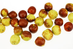A lot of winter jujubes Royalty Free Stock Image