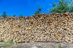 Lot of wooden piles under blue sky Royalty Free Stock Image