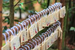 The Lot of Wooden of Wishing Plaques. The Lot of Wooden Wishing Plaques Royalty Free Stock Images