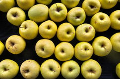 A lot of yellow apples. Some natural yellow - green apple on a black surface Royalty Free Stock Images