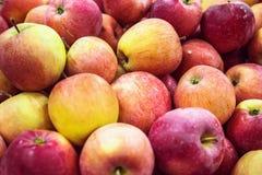 lote cru fresco de maçãs vermelhas verdes no contador Fotos de Stock