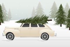 Lote da árvore de Natal do vintage ilustração royalty free