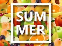Lote de frutos suculentos e do texto na beira branca ilustração stock