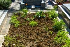 lote de terra em um cemitério a uma sepultura nova imagens de stock