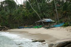 Lote dos barcos na praia, Sri Lanka, Ásia imagens de stock royalty free