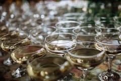 Lote dos vidros com champanhe na tabela Imagens de Stock Royalty Free