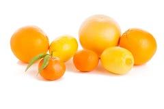 Loteia o citrino maduro no branco Fotos de Stock Royalty Free