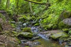 Lotenbach Gorge in Blach Forest, Germany. Lotenbach Gorge in Blach Forest in Germany Stock Images