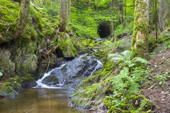 Lotenbach Gorge in Blach Forest Royalty Free Stock Photos