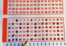 Lotería que conjetura la combinación 2011 Imagen de archivo libre de regalías