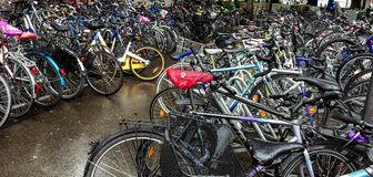 Lotes das bicicletas estacionadas na rua Imagem de Stock Royalty Free