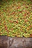 Lotes das maçãs Fotografia de Stock Royalty Free