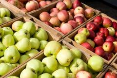 Lotes das maçãs Imagens de Stock