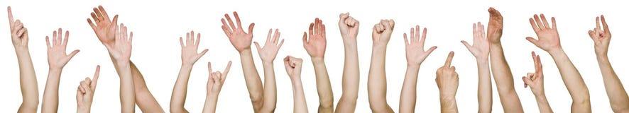 Lotes das mãos levantadas Imagens de Stock