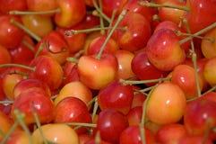 Lotes de cerejas mais chuvosas foto de stock royalty free