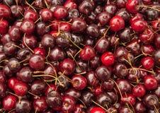 Lotes de cerejas vermelhas. fotos de stock