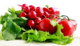 Lotes de legumes frescos: radish, tomate, pimenta Imagens de Stock Royalty Free