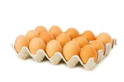 Lotes dos ovos na caixa Fotos de Stock Royalty Free