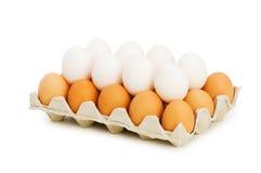 Lotes dos ovos no branco Fotografia de Stock Royalty Free
