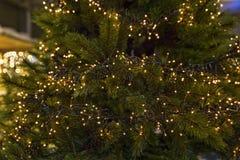 Lotes e lotes de luzes de Natal Fotografia de Stock Royalty Free