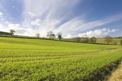 Lothian ad ovest, Scozia, autunno Fotografia Stock
