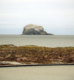 Lothian Coast with Bass Rock. Seacoast in Lothian - region in south Scotland with The Bass Rock in backround. The Bass Rock is an island in the outer part of the Stock Images