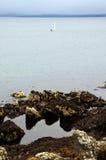 Lothian Coast with Sailing Boat. Seacoast in Lothian - region in south Scotland Royalty Free Stock Photography