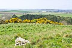 Lothian landscape. Landscape view of rural Lothian, in Scotland Stock Image