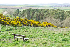 Lothian landscape. Landscape view of rural Lothian, in Scotland with a bench in the scene Royalty Free Stock Images