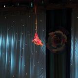 Lotnicza gimnastyczka zdjęcie stock