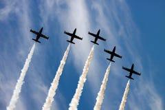 lotnicza grupa Zdjęcia Royalty Free