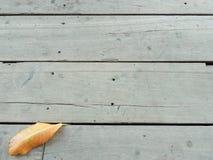 2008 lotniczego jesień suchego spadek złoty gaju liść opuszczać blisko Październik dębowych zwrotów Russia które wiatrowy kolor ż Zdjęcia Royalty Free