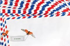 Lotniczej poczta natury koperty Zdjęcie Royalty Free