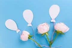 lotniczy balony i kwiaty obraz stock
