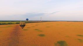 Lotniczy balony lata nad pszenicznymi polami, krajowi udogodnienia natura, patriotyzm zbiory