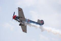 lotniczy brzegowy palmowy przedstawienie Zdjęcia Stock