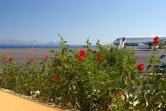 Lotnisko w kolorach zdjęcie royalty free