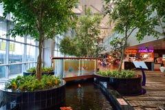 lotniskowy Changi Singapore Obrazy Stock